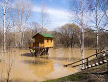 Flooding and tree house Royalty Free Stock Photo
