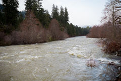Flooding Willamette River Oregon Royalty Free Stock Photos