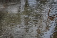 Flooding, winter rains in Israel. Rain Water floods the cars road and pavement. Flooding, winter rains in Israel. Rain Water floods the pavement and the cars royalty free stock images