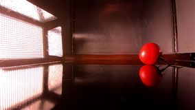 Floodlight lights up the falling of a tomato in slow motion stock footage