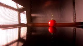 Floodlight lights up the falling of a tomato in slow motion stock video footage