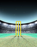 Floodlit Stadium Night. A generic seated cricket stadium with cracked pitch and yellow wickets on a green grass pitch at night under illuminated floodlights - 3D Stock Photography