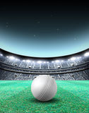 Floodlit Stadium Night. A generic seated cricket stadium with a white ball on a green grass pitch at night under illuminated floodlights - 3D render stock illustration