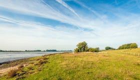 Floodplain av en holländsk flod tidigt på morgonen Arkivfoto