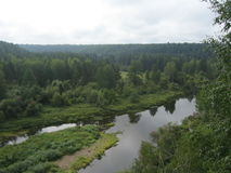 Floodplain among the lush forests of the river Stock Photography
