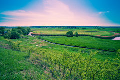 Floodplain meadow in spring Stock Images