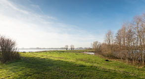 Floodplain of a wide river in the low morning sun Stock Photo