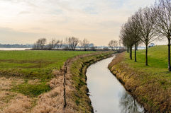 Floodplains of a wide Dutch river in the winter season royalty free stock image