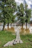 Floods in Belgrade Royalty Free Stock Photo