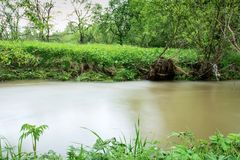 River in the Ukrainian countryside during a flood Stock Images
