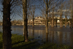 Floods in Coimbra Portugal. COIMBRA, PORTUGAL - Feb 15, 2016: Severe flooding after the River Mondego burst it`s banks in the ancient university city of Coimbra Royalty Free Stock Photo