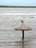 Floods in Parana river Stock Photos