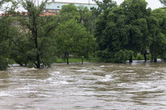 Floods Prague 2013 - Stvanice island under water Stock Photo