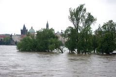 Floods in Prague, 4th june 2013 Royalty Free Stock Images