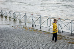 Floods in Prague, 4th june 2013 Royalty Free Stock Photos
