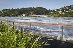 Floodwater på den Tamar floden, Launceston, Tasmania Arkivbilder