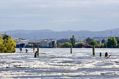 Floodwater på Launceston, Tasmania, Aust Royaltyfria Bilder