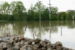 Floodwater Royalty Free Stock Image