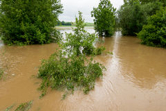 Floodwater Royalty Free Stock Photography