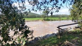 Floodwaters Oxenford, Queensland, Australië Stock Afbeeldingen