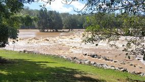 Floodwaters Oxenford, Queensland, Australië Royalty-vrije Stock Foto