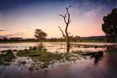Floodwaters schemer aan avondbinnenland Australië Royalty-vrije Stock Foto