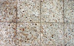 Floor. 8 flooring texture (in color Stock Image