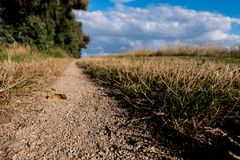 Trekking sandstone path with clouds on the blue sky. stock photography