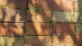 Floor of bricks royalty free stock image