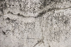 Floor Concrete Royalty Free Stock Image