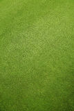 Floor grass Royalty Free Stock Photography
