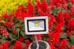 Floor light Royalty Free Stock Photography