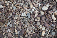 Floor pattern of stone Royalty Free Stock Images
