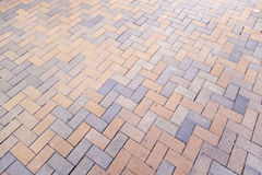 Floor pavers in a path Royalty Free Stock Photos