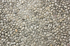 Floor stone texture Stock Photos