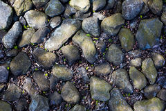 Floor of stones Stock Photography