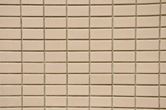 Wall tiles. Royalty Free Stock Images