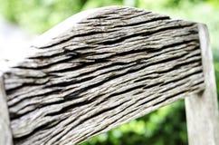 floor trä Arkivfoton