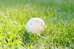 Floorbal ball in green grass Royalty Free Stock Image