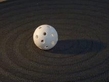 Floorball Immagine Stock Libera da Diritti