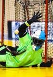 Floorball Goalie stock photography