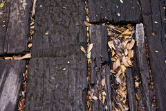 Floorboards and leaves Stock Images
