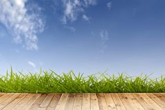 Flooring with grass Royalty Free Stock Images