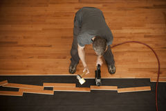 Flooring installation royalty free stock photo