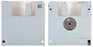 floppy talerzowy grey obrazy royalty free