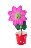 Floppy Wooden Flower Pushup Toy in a pot Stock Images
