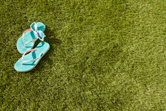 Flops in the grass. Holiday image Royalty Free Stock Photography