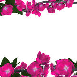 Flor stock de ilustración