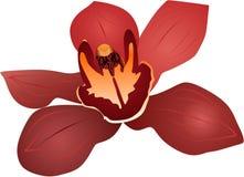 Flor 1 Imágenes de archivo libres de regalías
