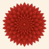 Flor abstracta, crisantemo rojo Ilustración del vector ilustración del vector